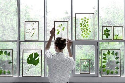 DIY-wallart-plantas-distintas-figuras