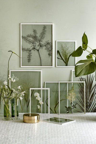DIY-wallart-plantas-y-flores